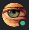 CoinPot - последнее сообщение от DjAlexMoon