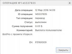 vp2-300x224.jpg